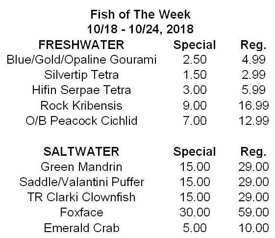 Fish of week